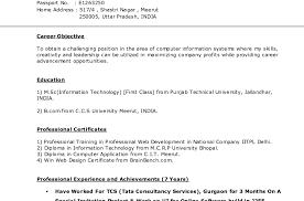 build your cv online