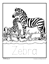 zoo babies zebra zoo animal coloring pages with letter writing practice on zoo coloring sheets