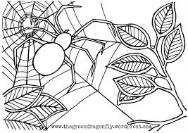 Small Picture Friendly Spider Coloring Sheet Tags Spider Coloring Sheet