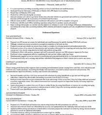Amazing Tax Auditor Resume Pictures Simple Resume Office