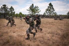 essay on n army  n army essay on republic day in punjabi buy essay bing sign in timeeducation in