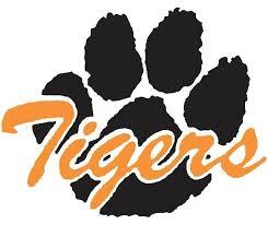 Image result for sterling tigers
