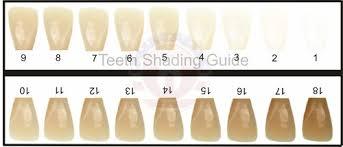 Amazon com professional 3d r 20 teeth whitening shade. Tooth Shade Guide Teeth Whitening Distribution Usa