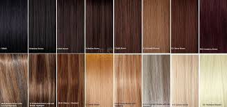 37 You Will Love Hair Extension Colours Chart