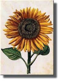 sunflower wall art diy cereal box sunflower wall art on diy sunflower wall art with sunflower wall art diy cereal box sunflower wall art ronseal fo