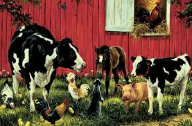 farm animals together. Fine Animals Farm Animals Wallpaper  Animals Together  Inside Pinterest