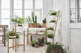 creative ideas home. Beautiful Indoor Garden Creative Ideas With Easy Care Plants Home I