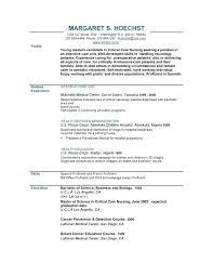 Short Resume Format Extraordinary Short Resume Example Some Resume Like Short Resume Examples Short