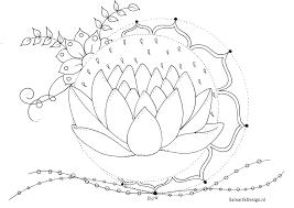 Kleurplaat Voor Volwassenen Lotus Free Colouring Pages Flowers