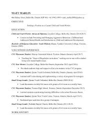 Resume Example Youth Worker Resume Pdf Download