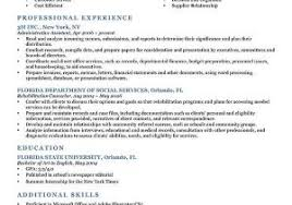 Best Resume Ever From The Best M And M Cookies Archives Wp