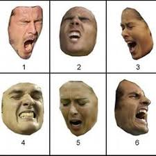 Facial Expressions Test Pearltrees