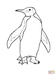 Cooloring Book Penguin Coloring Sheet Free Template Printable
