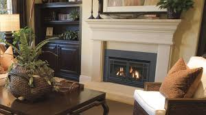 with a variety of design and door options the chaska gas insert will make your fireplace the focal point of your home