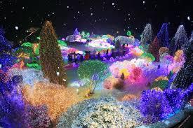 lighting in garden. Lighting Festival At The Garden Of Morning Calm (아침고요수목원 오색별빛정원전 In