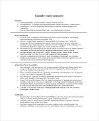 Resume Career Summary Examples - Examples of Resumes