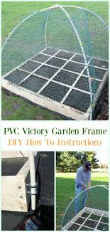 pvc victory garden frame diy instructions low budget diy pvc garden projects