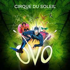 Santa Ana Seating Chart Ovo Shows In Dallas Cirque Du Soleil