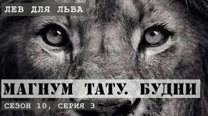 тату лев для льва магнум тату будни сезон 10 серия 3