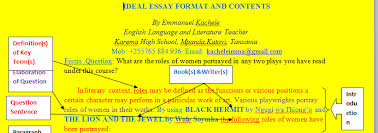 o level english blog study teach literature essay  a good introduction of a literary essay