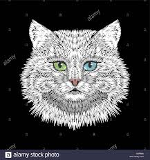 Cat Silhouette Embroidery Design White Cat With Blue Green Eyes Face Head Embroidery Design