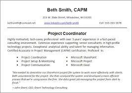 resume summary samples resume profile examples it professional resume setup