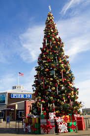 Christmas Tree At Fishermanu0027s Wharf San Francisco  NaturetimeChristmas Tree In San Francisco