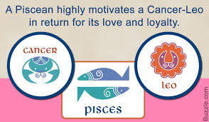 Relationship Compatibility Of The Cancer Leo Cusp With Other