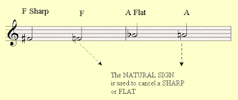 Musical Staff Sign The Natural Sign In Music