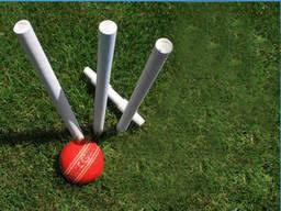 Backyard Cricket U2013 Awesome UglyBackyard Cricket Set