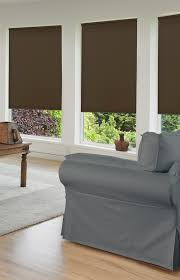 light blocking blinds. We Even Have A Combination Shade Called Deluxe Cordless Day/Night Single Cellular That Has Light Filtering At The Top And Blackout Blocking Blinds .