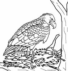 Eagle Coloring Pages Awesome 23 Bald Eagle Coloring Page Coloring Page