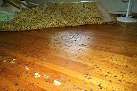 hardwood floor design rug carpet pads for area rugs best rug pad for hardwood floors rug