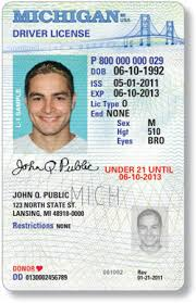 Michigan A On Points Driver License