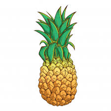 pineapple emoji png. pineapple with color and outline on white background emoji png n