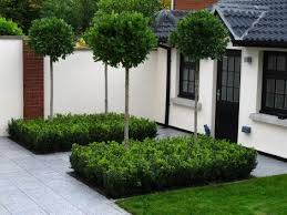 Small Picture Best 10 Small garden trees ideas on Pinterest London garden