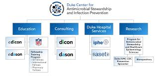 Cdc Organizational Chart Organization Chart Duke Center For Antimicrobial
