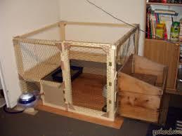 Le Terrier Des Lapins Afficher Le Sujet L Habitat De Calin
