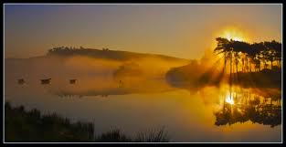 outdoor desktop backgrounds. Wallpaper : Sunlight, Trees, Landscape, Sunset, Water, Nature, Reflection, Outdoors, Scotland, Sunrise, Calm, Blue, Evening, Mist, Sun, Horizon, Time, Outdoor Desktop Backgrounds