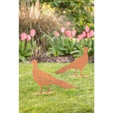 rusty garden pheasant