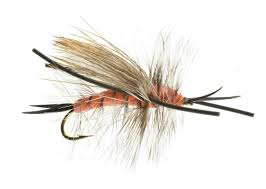 Salmon Fly Patterns Beauteous Dry Fly Stoneflies And Salmonflies Catch Fly Fishing Billings MT