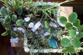gardening winter indoor miniature gardens mini garden