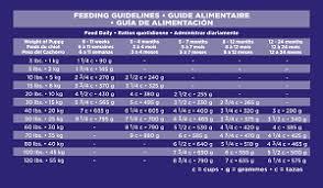 Puppy Chow Large Breed Feeding Chart English Mastiff Feeding Chart Goldenacresdogs Com