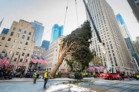 The Rockefeller Christmas Tree Meets ...