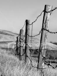 barbed wire fence drawing. Barb Wire Fence Clip Art | Barbed Photo Credit Jupiterimages Comstock . Drawing
