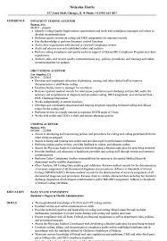Coding Auditor Resume Samples Velvet Jobs