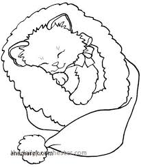 Dog And Cat Coloring Pages Elegant Cat Coloring Pages Printable