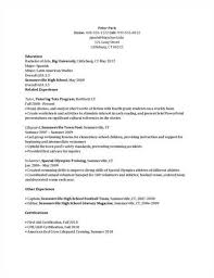Sample Camp Counselor Resume Gallery Creawizard Com