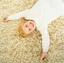 carpet cleaners in honolulu hi
