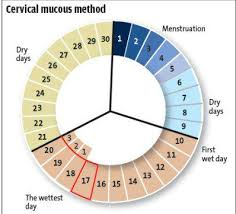 Natural Family Planning Mucus Chart Contraceptives Birth Control Family Planning Guide